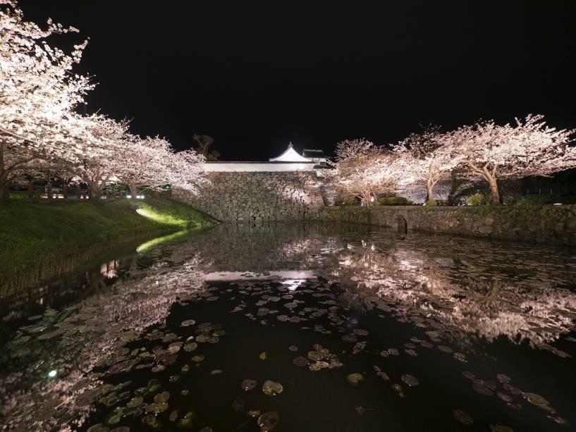 No Parque Maizuru estão as ruínas do Castelo de Fukuoka.  Hoje, cerejeiras e ameixeiras florescem ao redor do antigo fosso e suas paredes