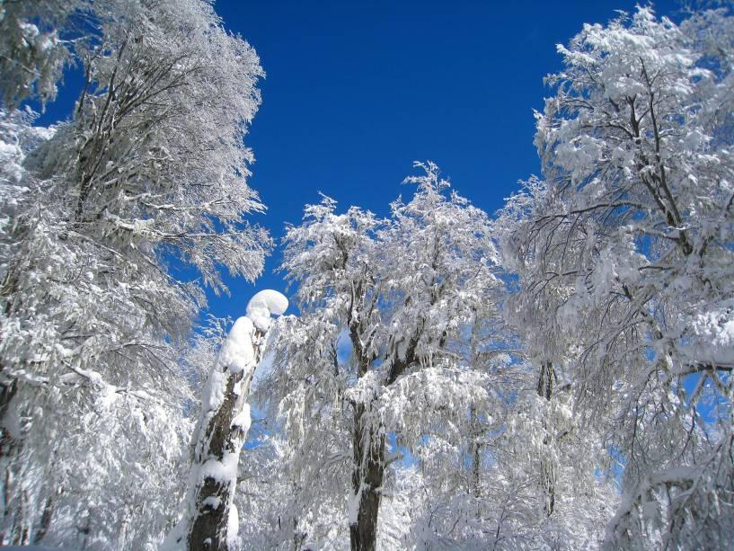 Belas paisagens dão o tom para o inverno