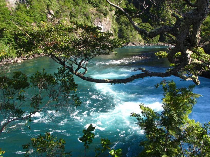 O rio Petrohué tem lindos tons de verde esmeralda e é uma das principais atrações perto de Puerto Montt.