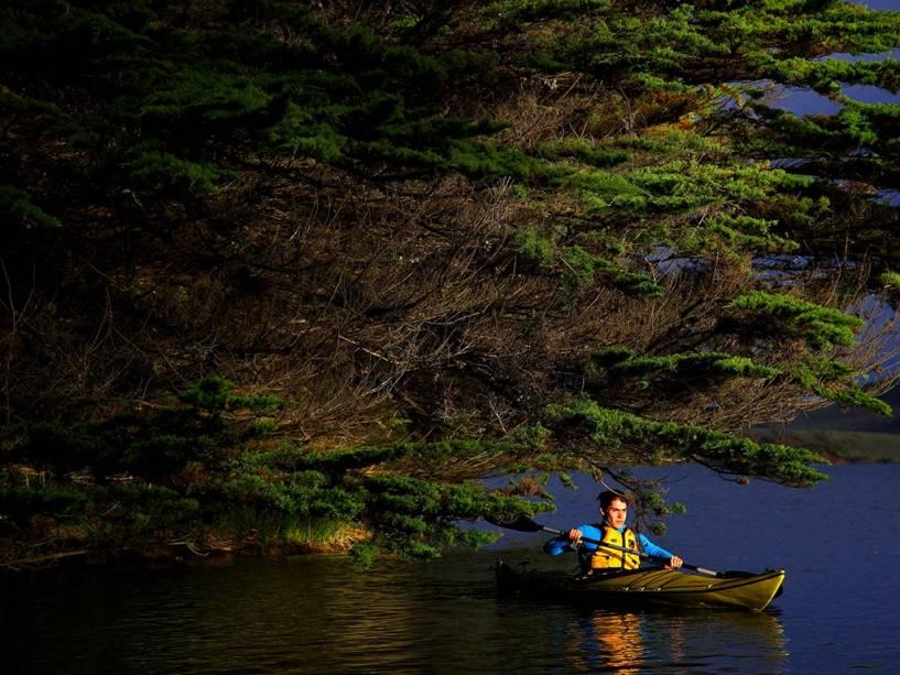 Puerto Saavedra é um bom lugar para esportes ao ar livre e observação da vida selvagem a oeste de Temuco