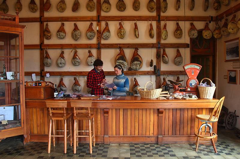 Loja de presunto em Capitán Pastene, Araucanía