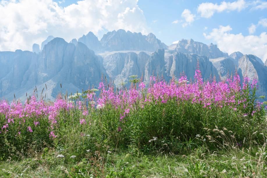 No verão, a paisagem branca de Val Gardena se torna mais colorida e florida
