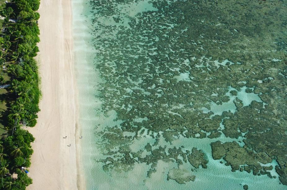 Os recifes de coral perto da praia são ideais para explorar com máscara e snorkel