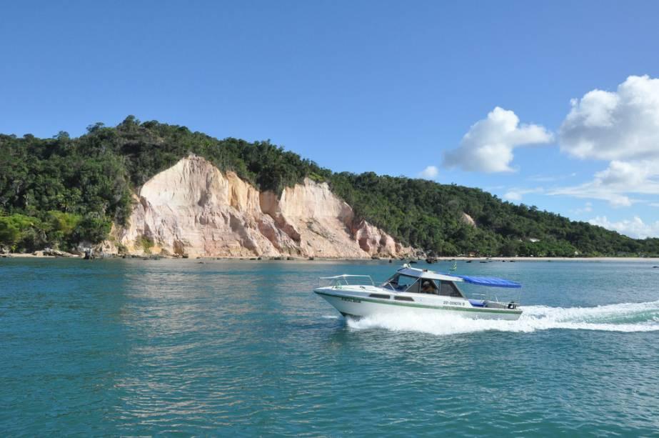 Os mergulhos acontecem nas placas do Forte, Tatiba e Tatimirim.  A melhor época para atividades é entre dezembro e março
