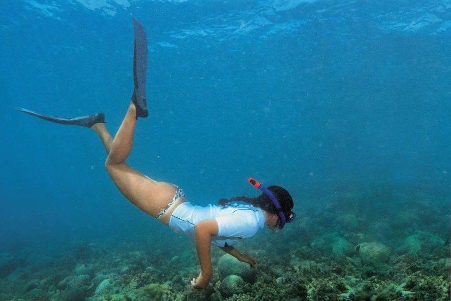A água transparente permite que os turistas vejam a vida marinha da região