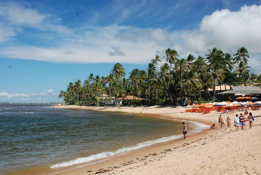 Com 14 km de reserva natural, a Praia do Forte possui uma ampla faixa de areia clara, adequada para caminhadas, e uma paisagem repleta de coqueiros.