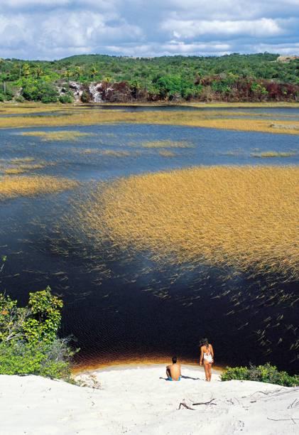 Uma das opções para conhecer a Praia do Forte é um passeio de canoa na lagoa Timeantube.