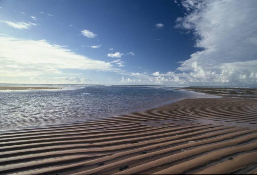 O trecho da Praia do Forte conhecido como Papa-Gente possui piscinas naturais repletas de peixes
