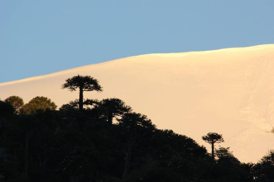 Corralco está localizado em uma reserva natural e perto de outros parques e florestas protegidas
