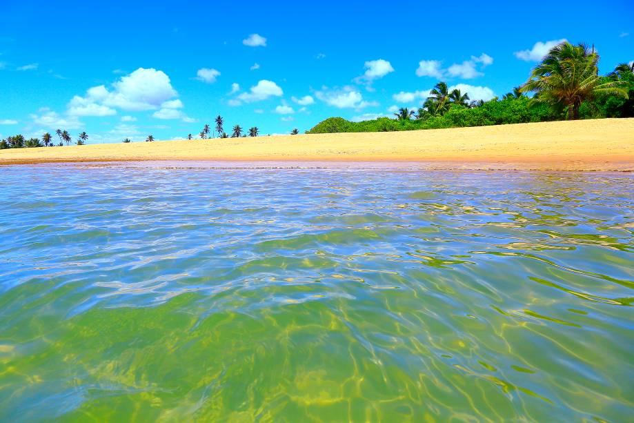 O trecho Praia do Forte faz parte da Costa dos Coqueiros, pois essa vegetação predomina na região.