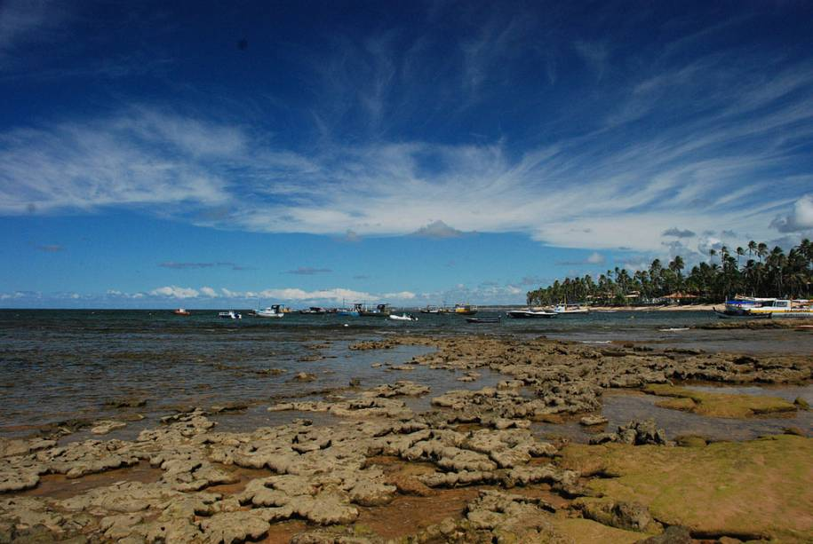 Maré baixa na Praia do Forte