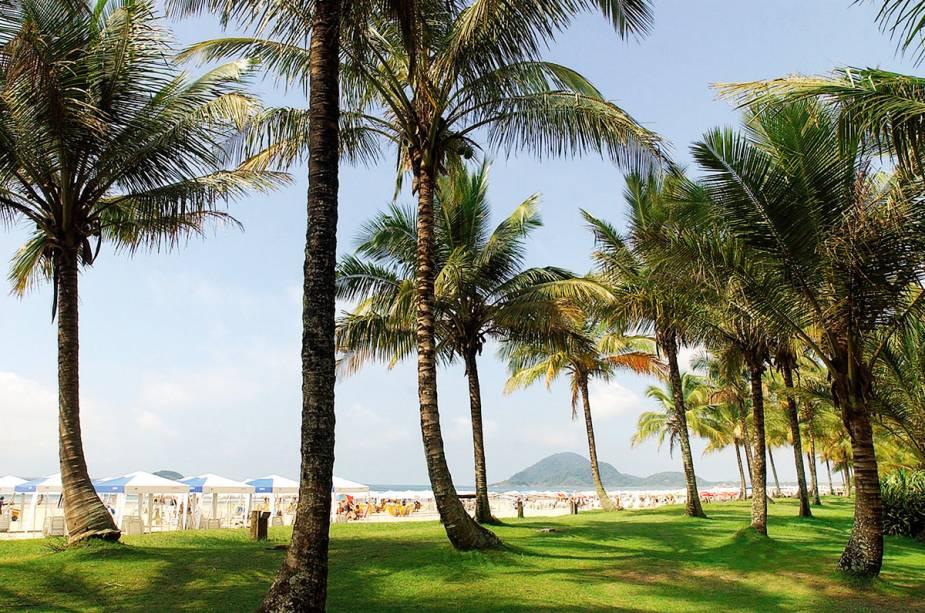 Jardins com coqueiros na praia da Riviera de São Lourenço