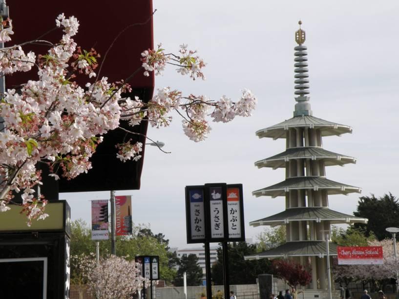 Cerejeira em Japantown, São Francisco