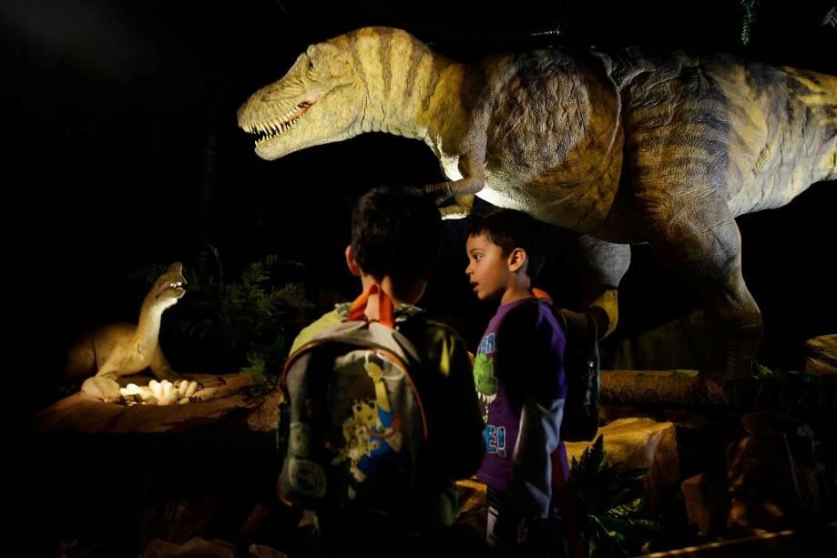 O Museu de História Natural é imperdível para quem viaja com crianças e jovens