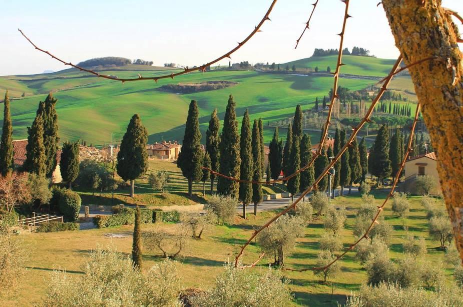 Paisagem toscana perto da cidade de Arezzo, no centro da Itália.  A Toscana é mundialmente famosa por seus exuberantes campos verdes repletos de vinhos e olivais