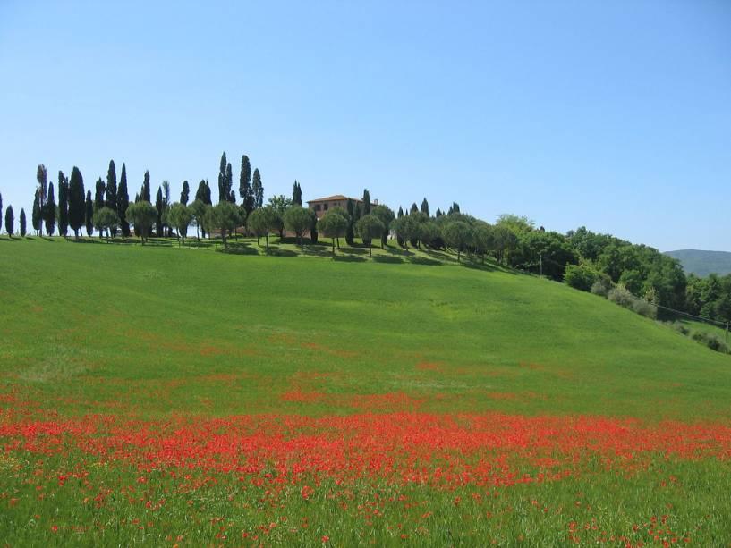 As colinas suaves e coloridas da Toscana sob o sol da primavera
