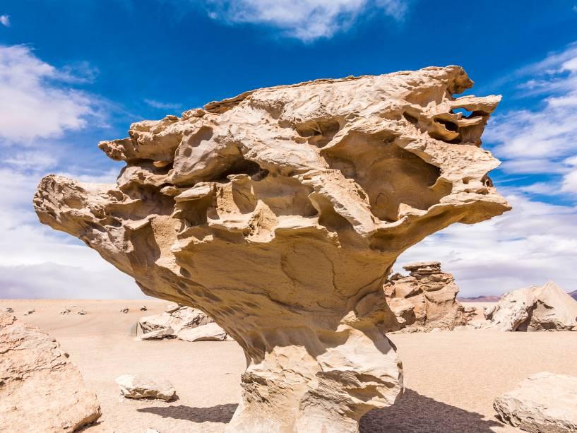 Arbol de Piedra  no Altiplano boliviano faz parte da visita ao Salar do Uyuni.  Existem muitas pedras nesta área que foram lascadas pelo vento e pela areia.  O mais famoso deles é a foto