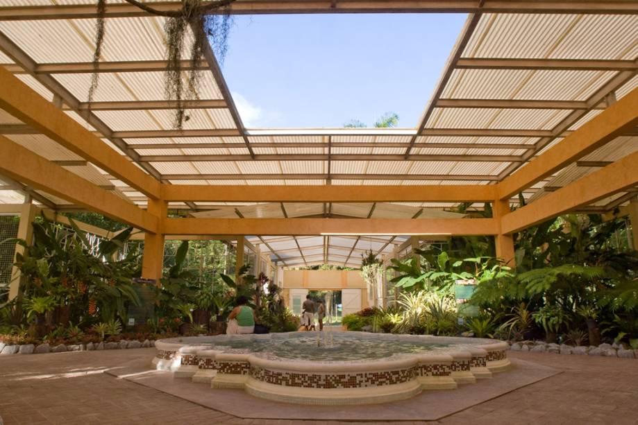O jardim botânico foi projetado por Dom João VI.  Projetado e exuberante, apesar de seus 202 anos de existência