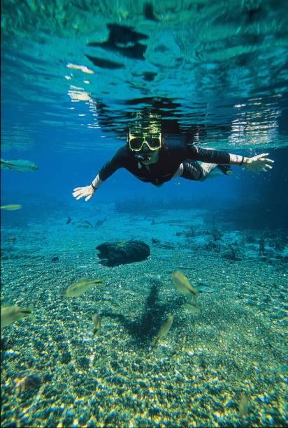 """Flutuação em""""http://riodaprata.com.br/"""" Meta =""""_vazio"""" rel =""""Noopener""""> <strong>Rio da Prata</strong> , um imenso aquário natural de águas cristalinas, é um dos principais atrativos de Bonito"""" class=""""lazyload"""" data-pin-nopin=""""true""""/></div> <p class="""