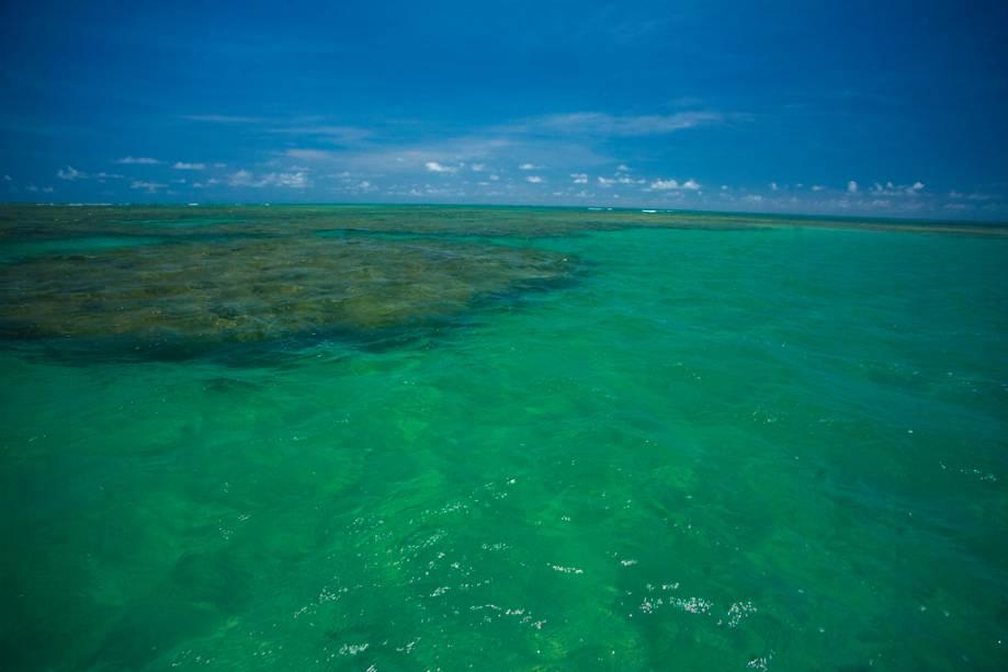 O mar de São Miguel dos Milagres é verde brilhante, quente e acidentado com as caracteristicas falésias da Costa dos Corais.  Há um banco de corais na praia do Porto da Rua