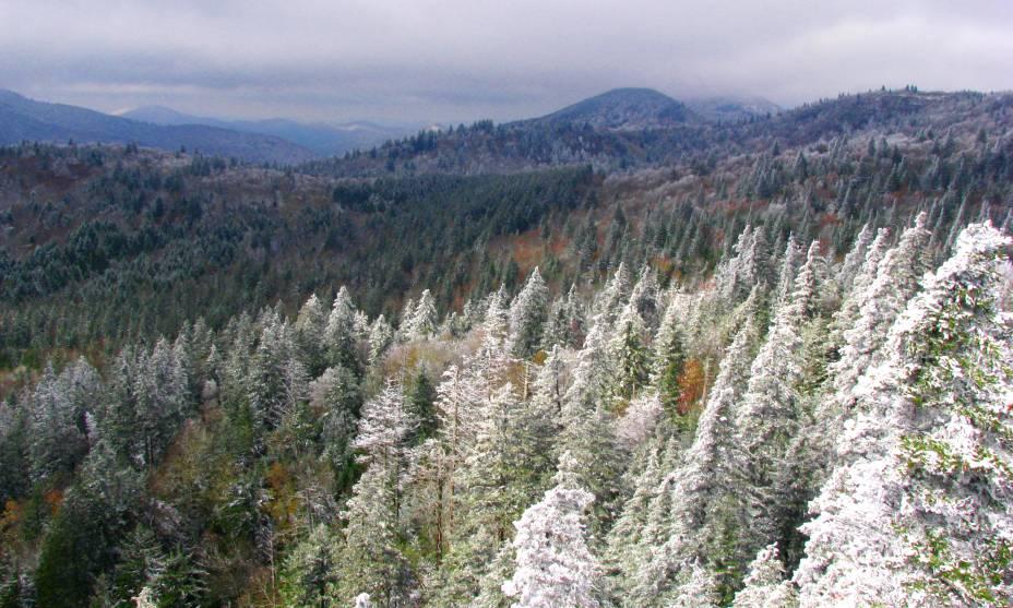 As paisagens da Transilvânia são ainda mais bonitas no inverno