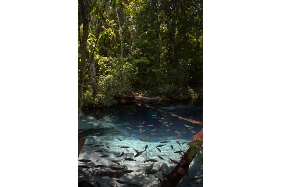 Aquário natural em Nobres, Mato Grosso