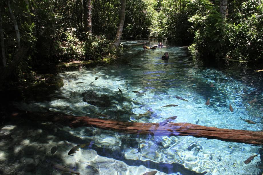 Rios cristalinos cheios de peixes, cavernas e cachoeiras: Nobres no Mato Grosso é perfeita para quem ama estar em contato com a natureza - e que natureza!