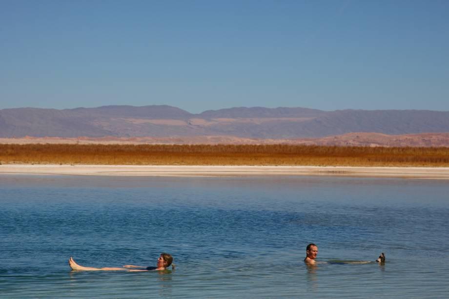 O Sal Laguna Cejar está localizado ao sul de San Pedro de Atacama.  Sua água de alta salinidade significa que quem mergulha nela não vai afundar