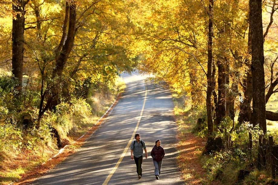 Pucón é um destino para todo o ano, com boas caminhadas de outubro a maio e esqui no inverno