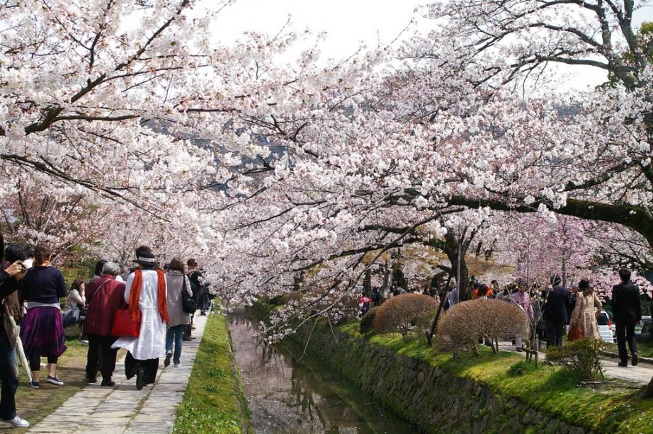 """O Philosophenweg, um beco pitoresco em um dos bairros mais tradicionais de""""http://viajeaqui.abril.com.br/cidades/japao-kyoto"""" rel =""""Quioto"""" Meta =""""_vazio""""> Kyoto"""" class=""""lazyload"""" data-pin-nopin=""""true""""/></div> <p class="""