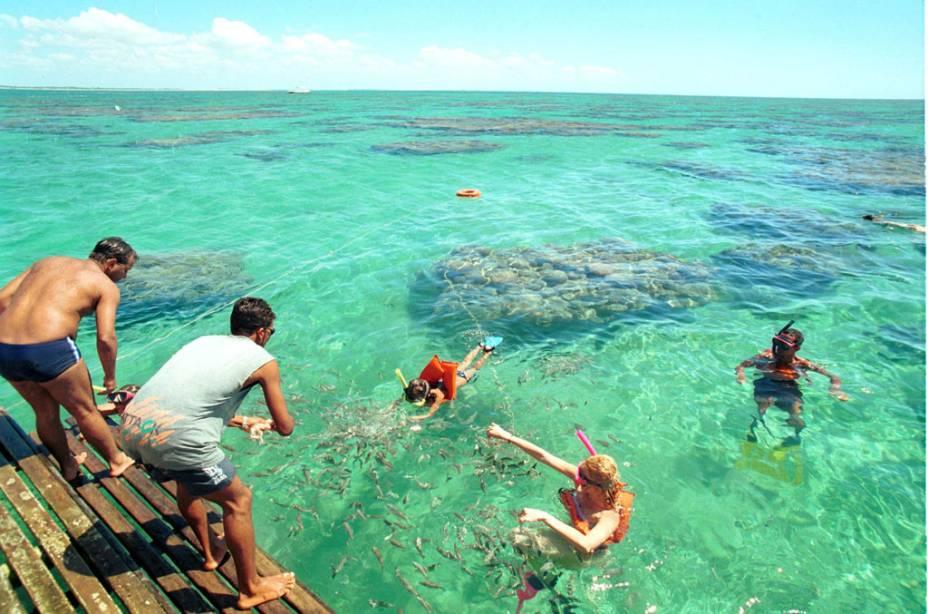 As piscinas naturais de Maracajaú, a 57 km de Natal, estão entre as mais belas do país
