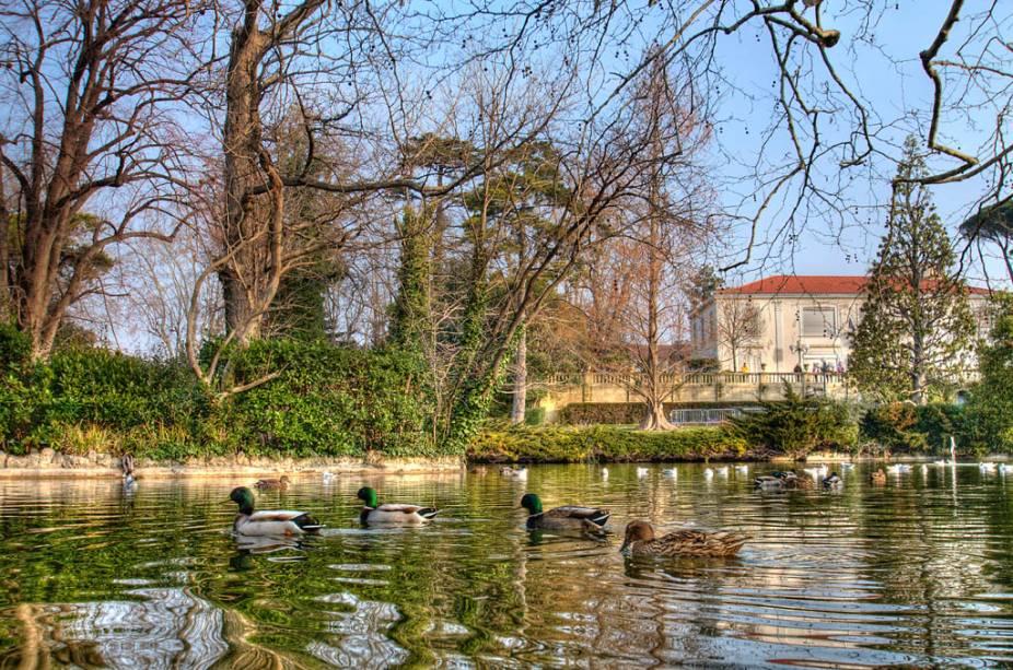 """Os patos nadam tranquilamente nas águas do Parque da Casa Branca""""http://viajeaqui.abril.com.br/cidades/franca-marselha/"""" rel =""""Marselha""""> Marselha,""""http://viajeaqui.abril.com.br/paises/franca"""" rel =""""França"""" Meta =""""_ele mesmo""""> França"""" classe =""""carga preguiçosa"""" data-pin-nopin =""""verdadeiro""""/></div> <p class="""