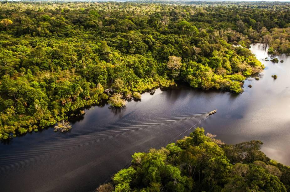 Amazonas, Manaus (AM)