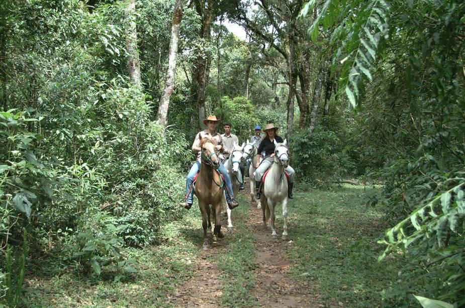 Alguns chalés organizam passeios a cavalo, como a Pousada dos Marchadores, que administra uma fazenda