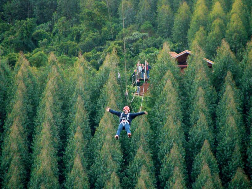 Quem se atreve a subir o escorregador Megatirolesa 450 mas a quase 50 km / h acima de um vale ladeado por eucaliptos