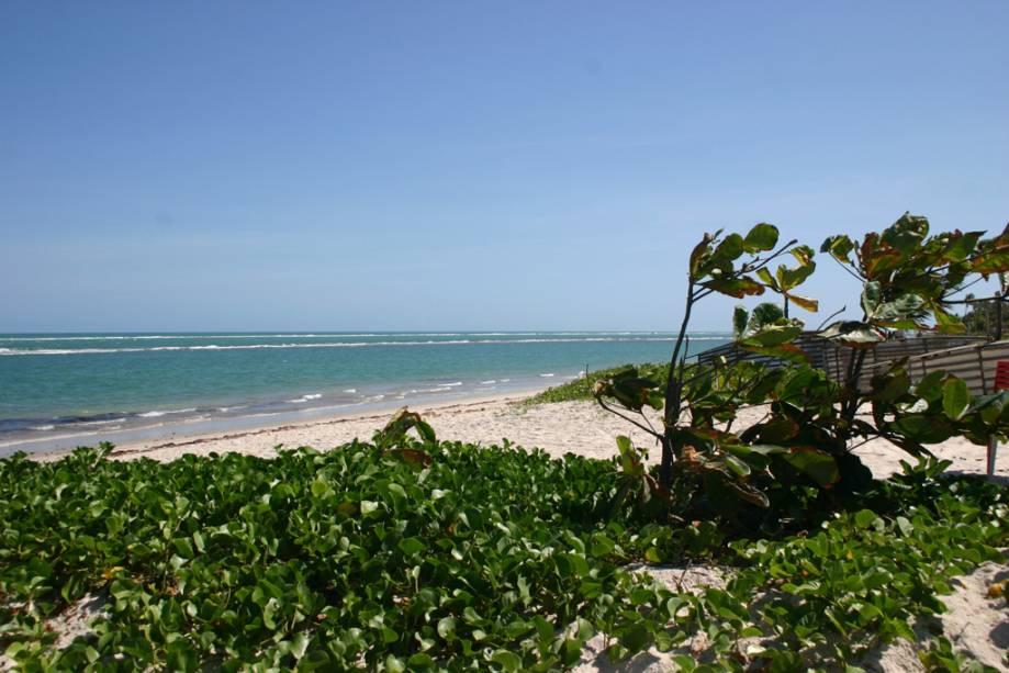 A Praia do Saco da Pedra é mais tranquila do que a vizinha Praia do Francês.  Há três maneiras de chegar lá: a pé, de carro ou de barco, mas para chegar a pé da Praia do Francês a maré deve estar baixa