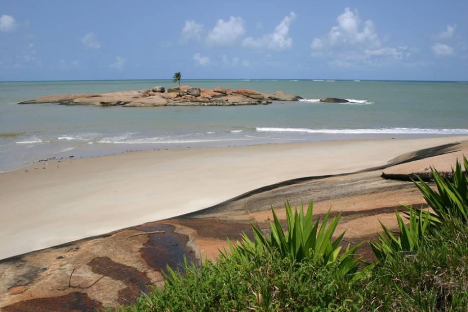 Ilha do Coqueiro Solitário em Tamandaré é cercada por águas calmas e transparentes