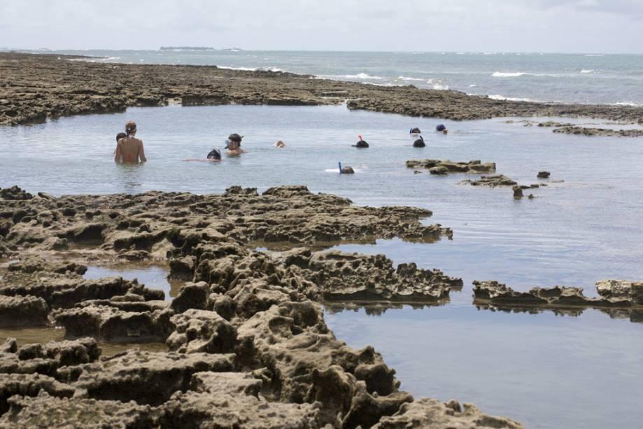 A Praia dos Carneiros possui piscinas naturais aconchegantes cheias de peixes coloridos adequados para mergulho com snorkel