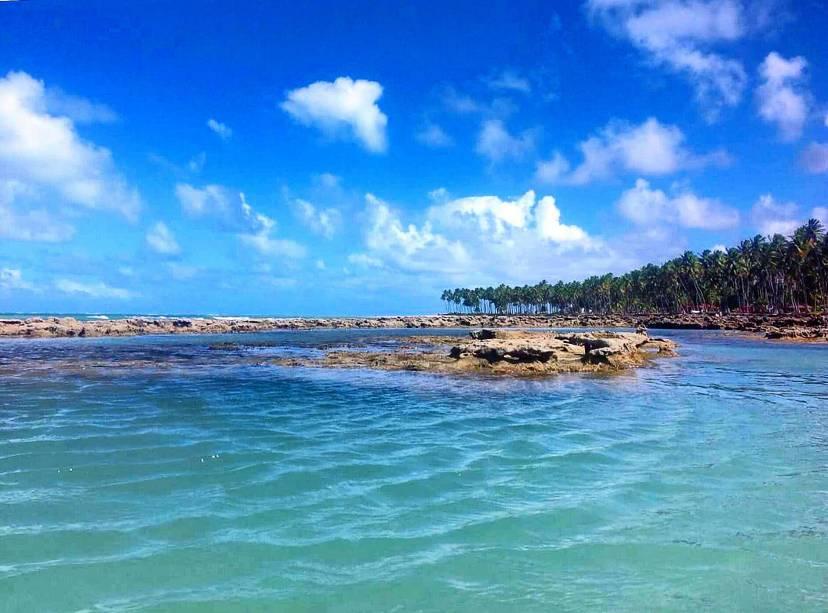 """Com seu mar cristalino e suas formações particulares oferecem""""http://viajeaqui.abril.com.br/estabelecimentos/br-pe-tamandare-atracao-dos-carneiros"""" rel =""""Praia dos Carneiros"""" Objetivo =""""_vazio""""> Praia dos Carneiros, em Tamandaré, atrai moradores de Recife que vêm até o litoral para passar o dia por lá"""" class=""""lazyload"""" data-pin-nopin=""""true""""/></div> <p class="""