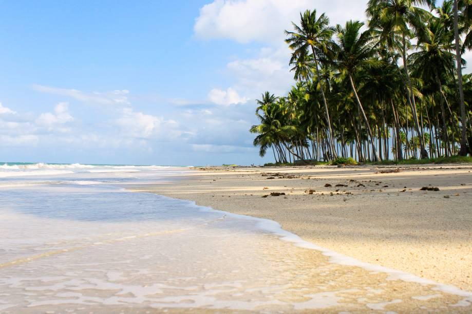 """UMA""""http://viajeaqui.abril.com.br/estabelecimentos/br-pe-tamandare-atracao-dos-carneiros"""" rel =""""Praia dos Carneiros"""" Objetivo =""""_vazio""""> Praia dos Carneiros é o ponto mais alto de Tamandaré ao sul do litoral de Pernambuco"""" class=""""lazyload"""" data-pin-nopin=""""true""""/></div> <p class="""