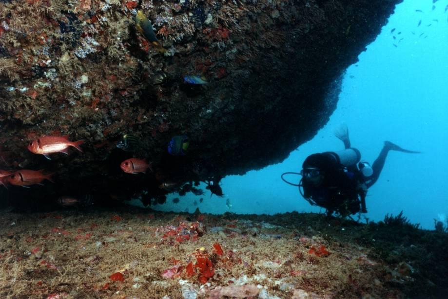 Mergulhe no Victory 8B, um naufrágio de 2003 que serve como um recife artificial