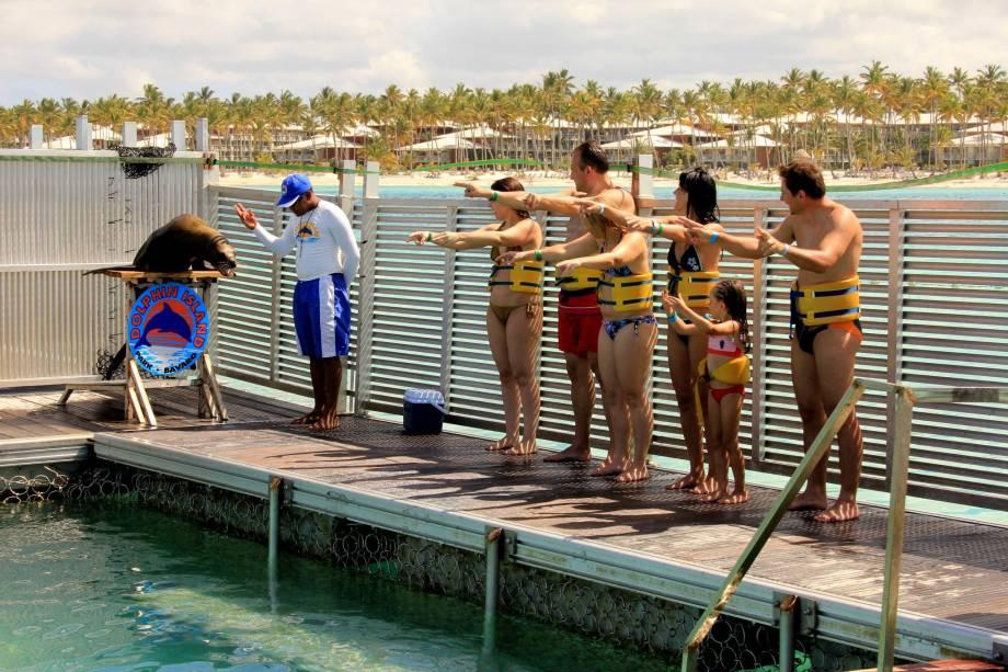 Show de leões marinhos no Dolphin Island Park