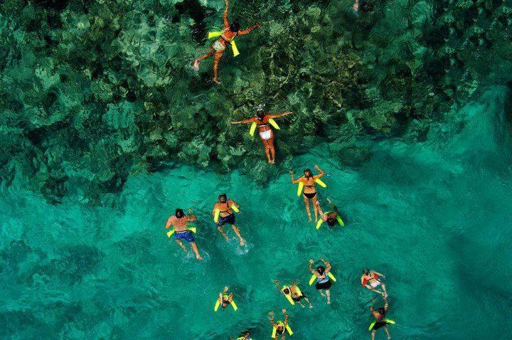 Mergulhe ao longo dos recifes de coral no Marinarium