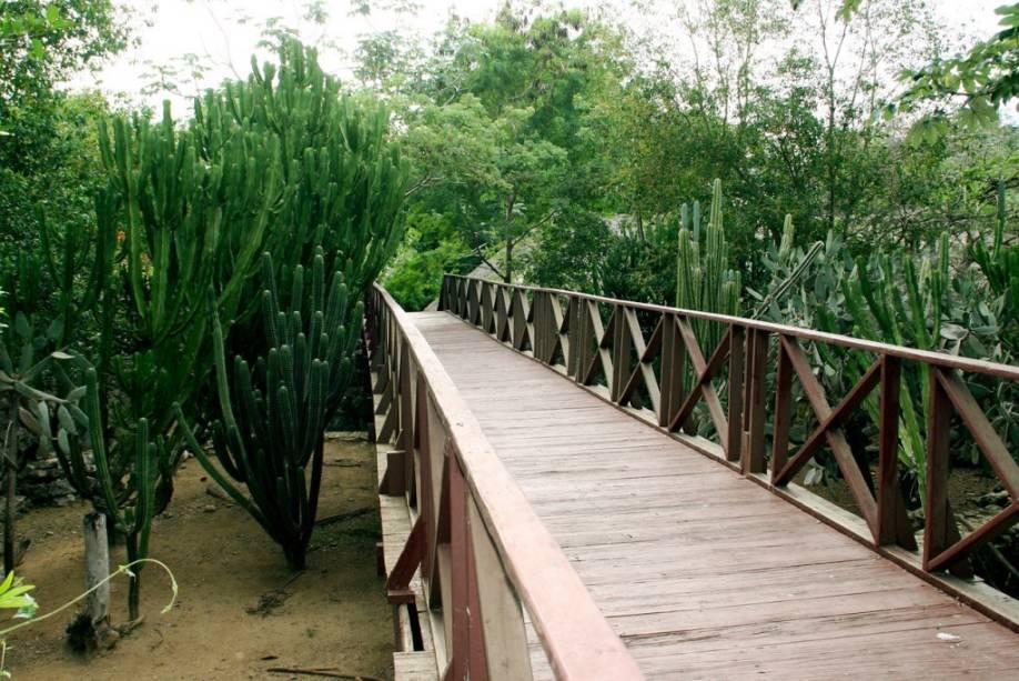 Parque dos peixes-boi