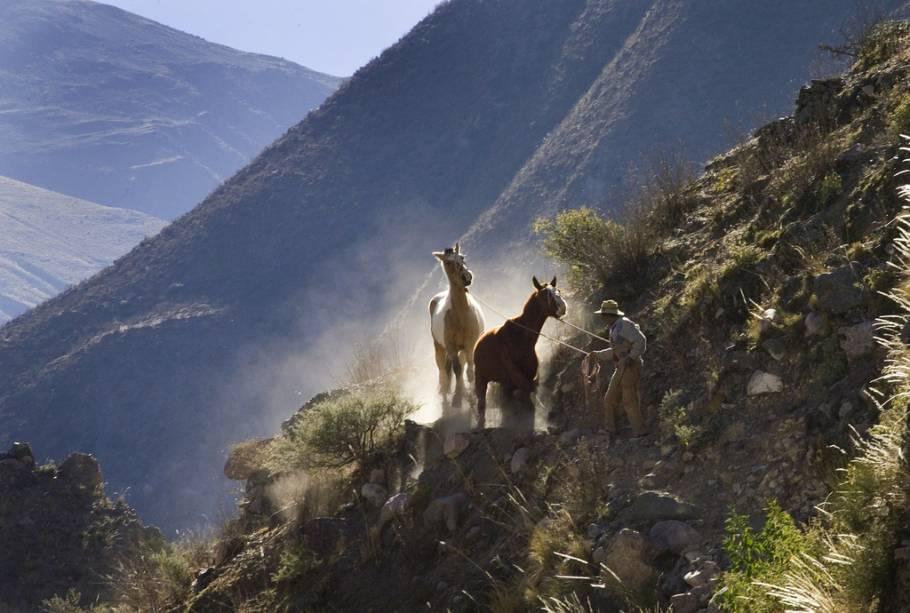 Trilha andina, perto de Salta