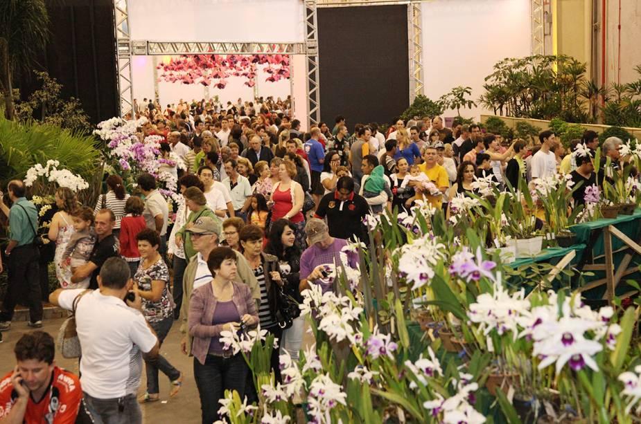 A 76ª Festa da Flor acontece em Joinville até o dia 16 de novembro.  O evento é o que mais vende orquídeas no Brasil.