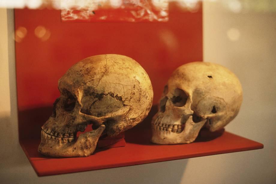 As exposições no Museu Arqueológico do Sambaqui mostram o modo de vida dos grupos que viveram no litoral brasileiro há mais de 2.000 anos
