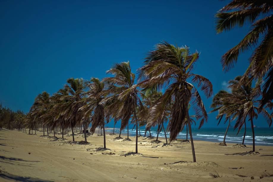 A Praia do Cumbuco é mais central e animada que a vila e ponto de partida para passeios de bugue, cavalo e mountain bike