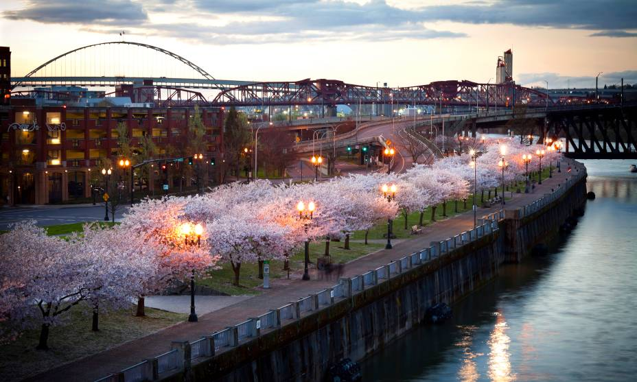 Tom McCall Waterfront Park em Portland, Estados Unidos