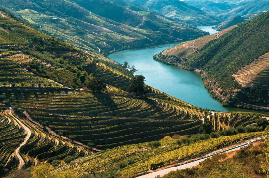 As vinhas que adornam o sinuoso Douro